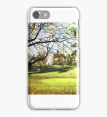 Sunlit trees iPhone Case/Skin