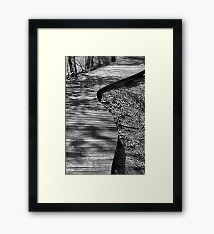 The Winding Path Framed Print