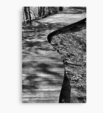 The Winding Path Canvas Print