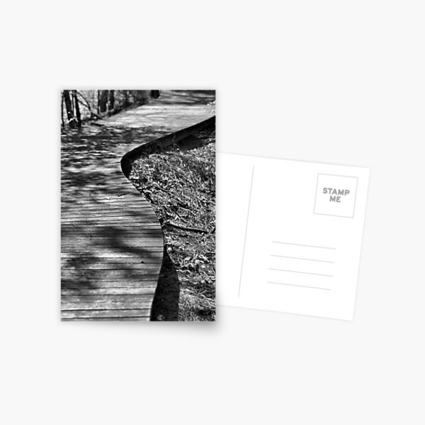 The Winding Path Postcard