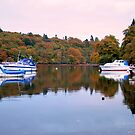 Boats  at  Luss by Alexander Mcrobbie-Munro