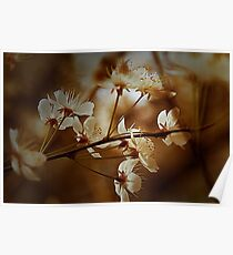 Spring Is In The Air - Floral Landscape Poster