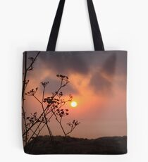 Sunset behind the fennel plant Tote Bag