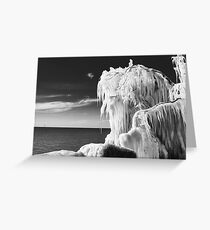 Frozen Branches Greeting Card