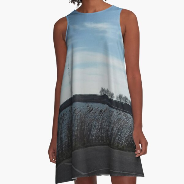 Parked at the water A-Line Dress