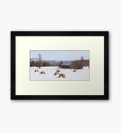 A Cold Winter's Day Framed Print