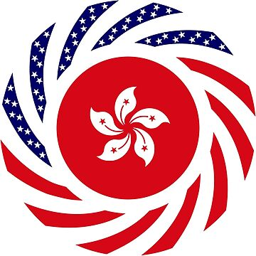 Hong Kong American Multinational Patriot Flag Series by carbonfibreme