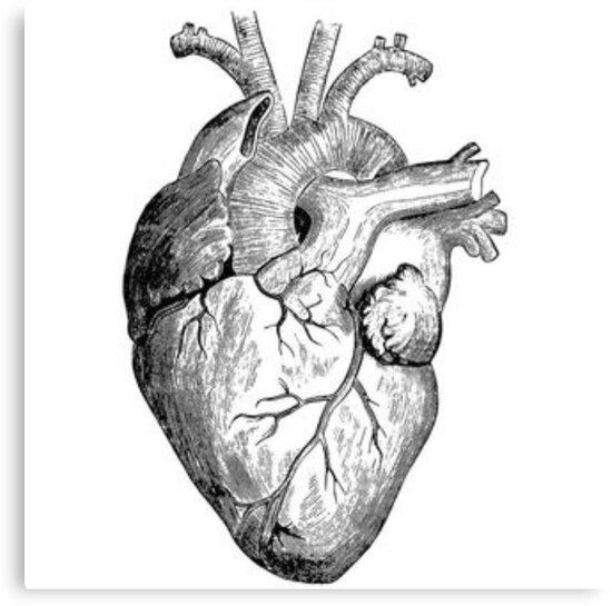 Impression sur toile \'Dessin coeur réaliste\' par RockyMountains