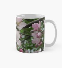 Apple Blossoms Classic Mug
