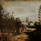 City of Fun by Sue Wickham
