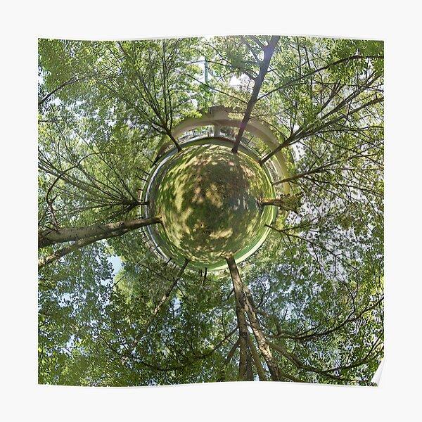 Treescape Poster