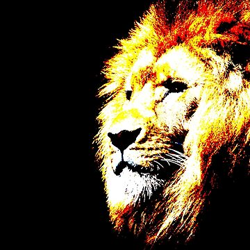 Neon Lion by ShaneReid2