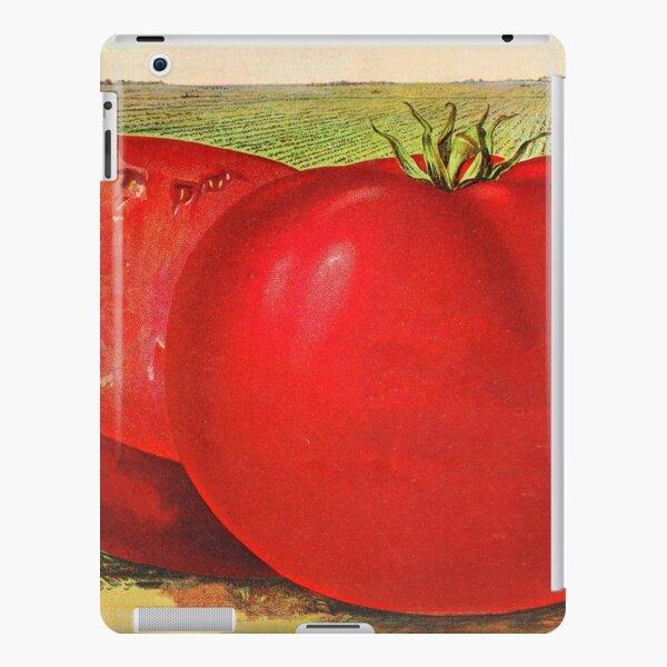 Vintage Illustration of a Beefsteak Tomato (1905) iPad Snap Case