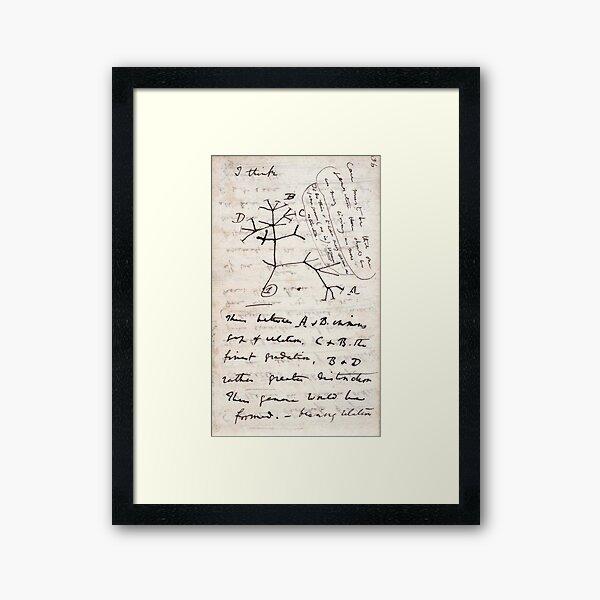 I Think - Charles Darwin 1 Framed Art Print