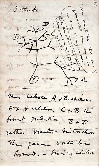 I Think - Charles Darwin 1 by GodsAutopsy