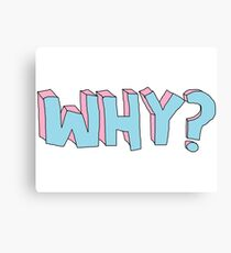 WHY ???  Canvas Print