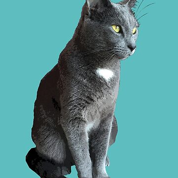 Grey Cat with Yellow Eyes by juniperdesign