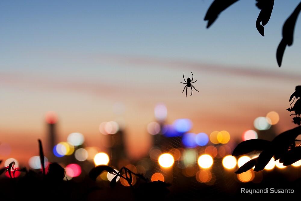 Spiderblur by Reynandi Susanto
