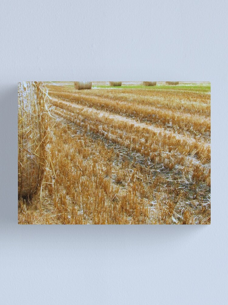 Alternate view of Bales Canvas Print