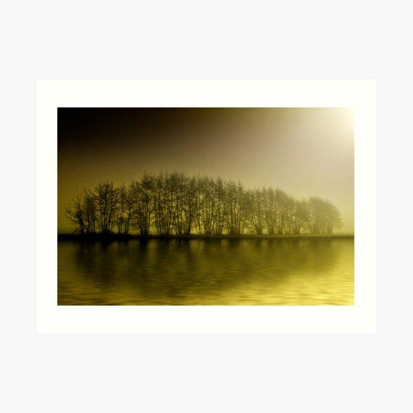 misty yellow Art Print