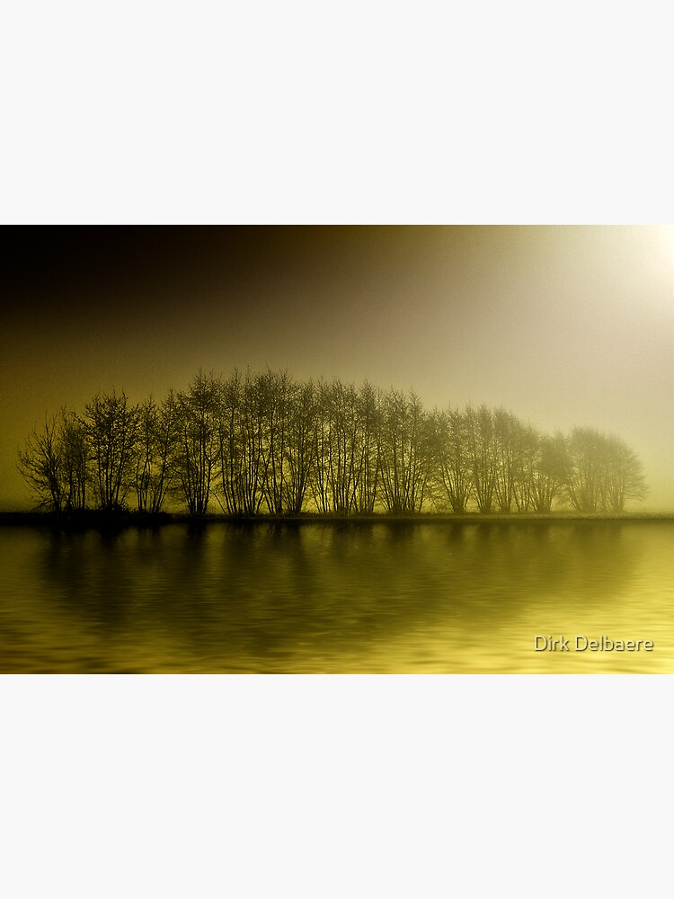 misty yellow by Delbaere