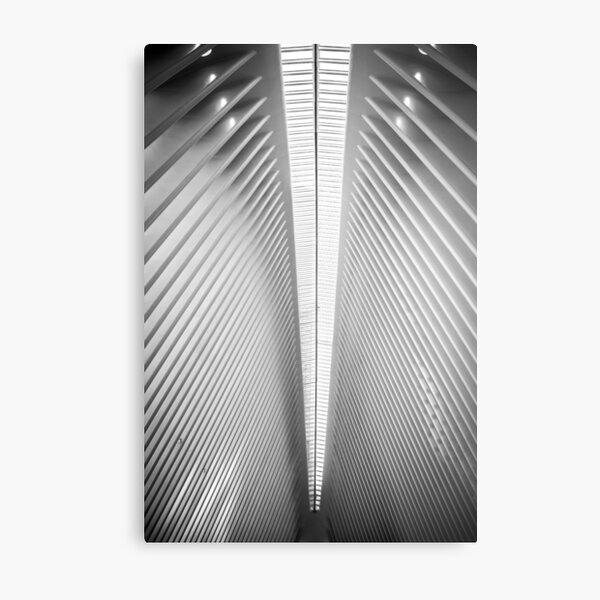 Lines At The Mall Metal Print