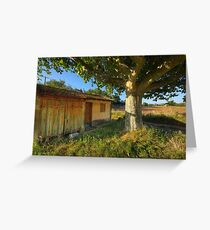 Cabanon in Provence Greeting Card