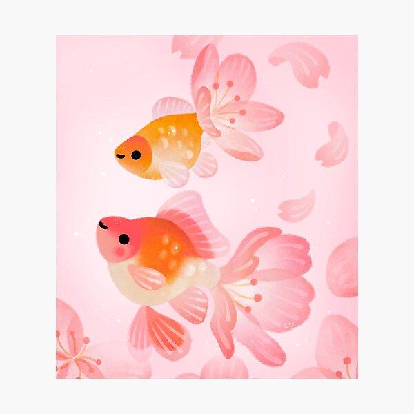 Cherry blossom goldfish 1 Photographic Print