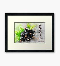 Black Currant Framed Print