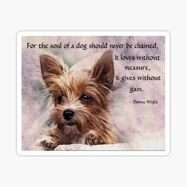 The Soul of a Dog - Yorkie Sticker