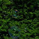Bubbles by solareclips~Julie  Alexander