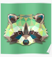 Raccoon Animals Gift Poster