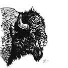 Bison by Bryan Politte