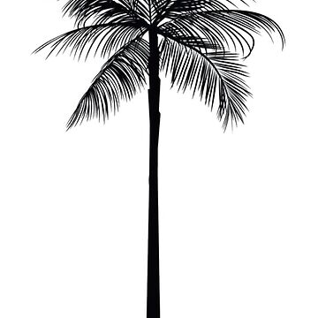 Tumblr// Palm tree by parrillasass