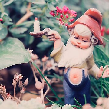 Finding my way Gnome [29/52] by Jam-Gloom