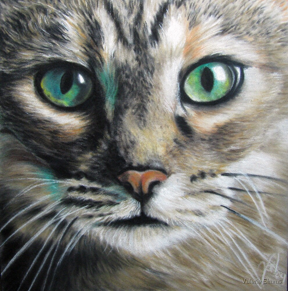 Green eyes by Valerie Simms