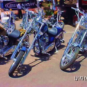 Bikes by ezcat