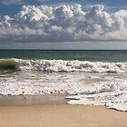 Atlantic ocean coastal scenery  by Zina Stromberg