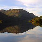 Loch  Eck by Alexander Mcrobbie-Munro