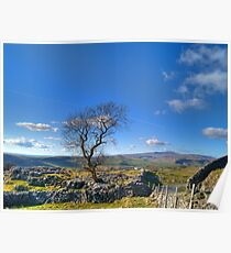 Between Settle and Grassington Poster