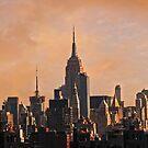 Manhattan by Alex Preiss