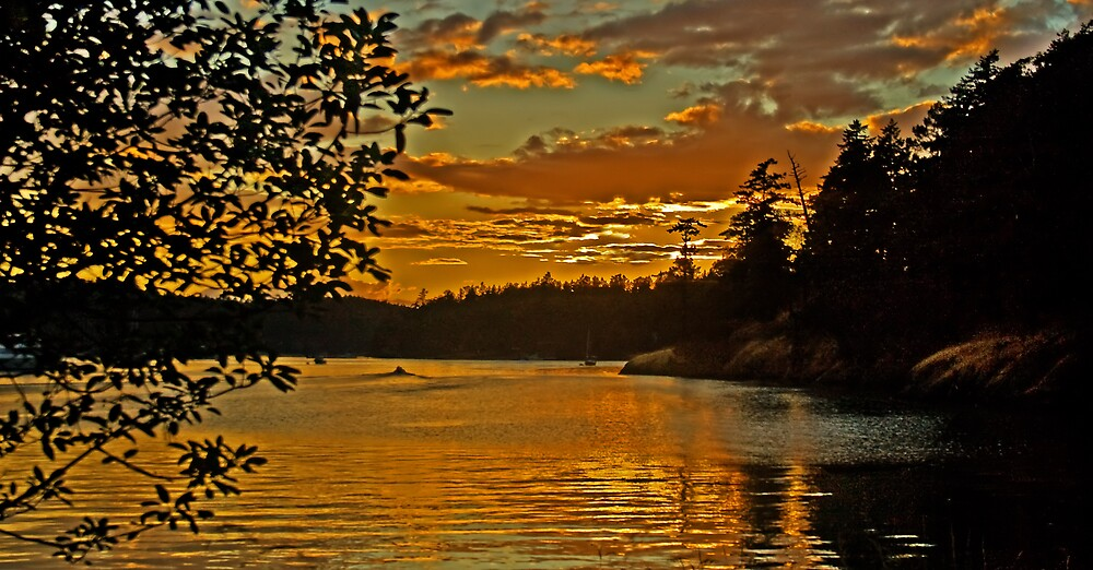 Rocha Harbor Sunset by haybales