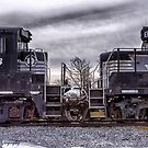 Kissing Plows Geneva, NY USA by Frank Kapusta