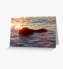 Swimming Through the Sunset Greeting Card