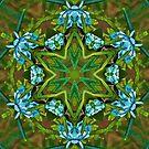Mandala of Rosemary Blossoms by DesJardins