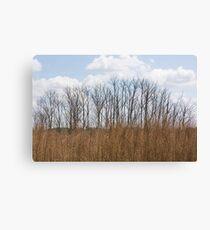 Prairie Canvas Print