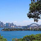 Sydney City Under Blue Sky by Steven Guy