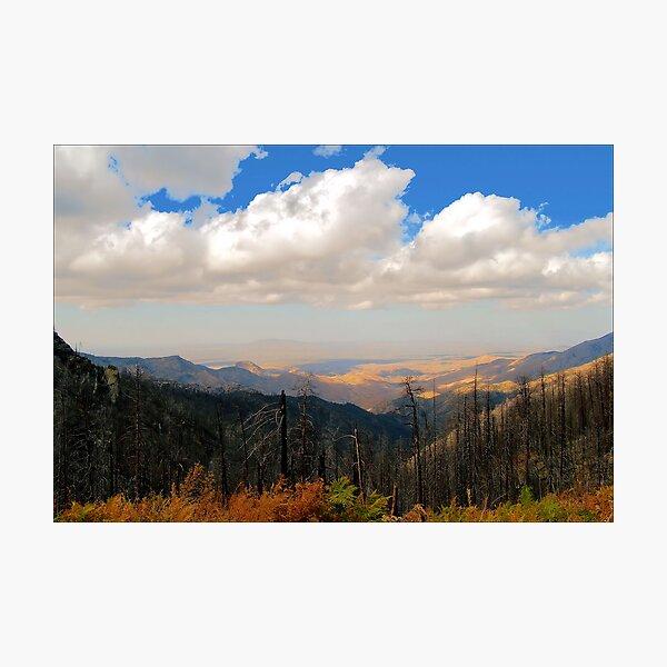 On Top of Arizona Photographic Print