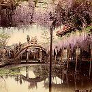 Wisteria at Kameido, Tokyo by Fletchsan