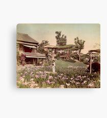 Iris garden at Horikiri, Japan Canvas Print